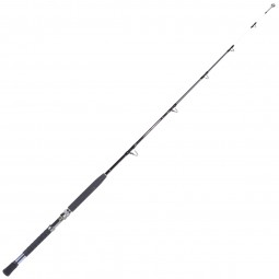 Penn Warfare Rod #WARC591MH TH