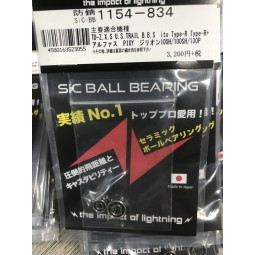 ZPI SiC Ball Bearings 1154-834
