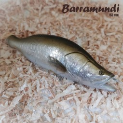 SHINE 30 Barramundi Hand Made Lure 15 cm